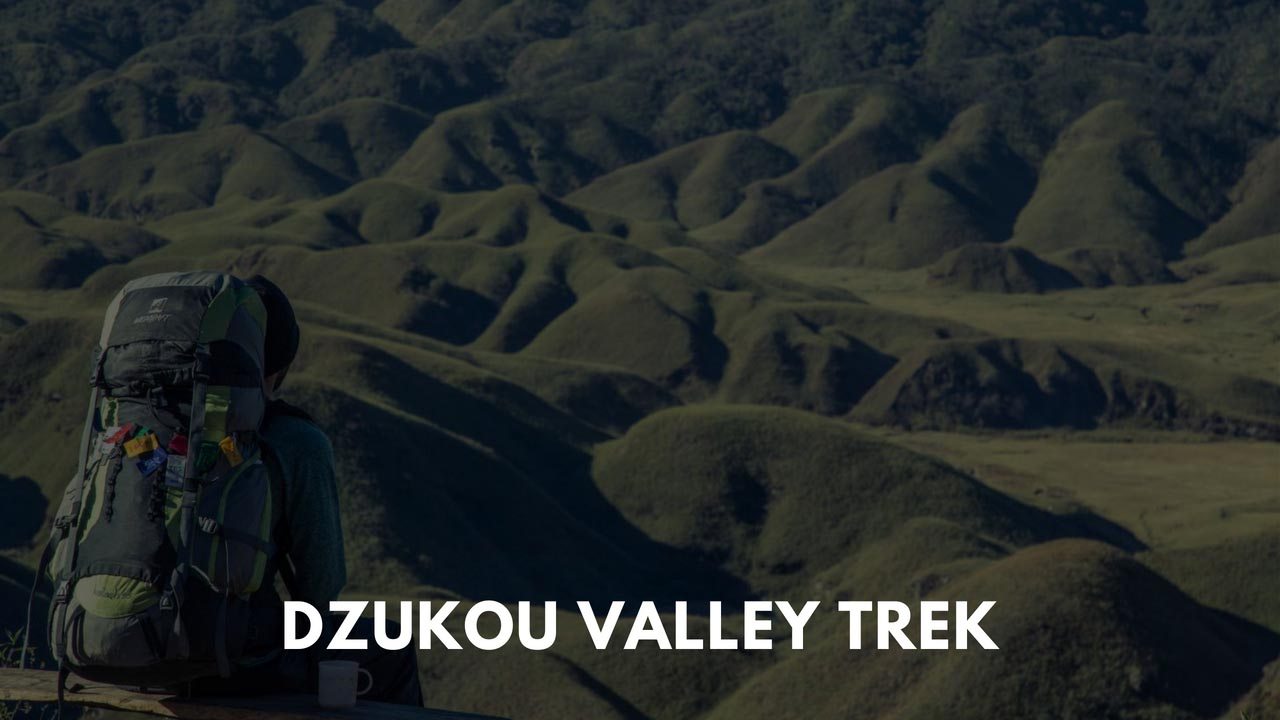 All that you wanted to know about Dzukou Valley Trek, Nagaland