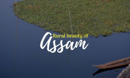 Rural Beauty of Assam